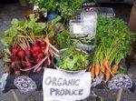 Greenbasicsorganicproducestand