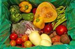 Organicfoodmmwwo001