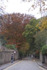 Autumn_2008_008